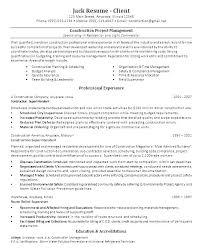 Construction Laborer Job Resume Resumes For Project Manager