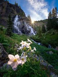 Image result for nature in may beautiful gif