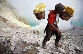 Труд и трудовая деятельность человека Трудовая деятельность