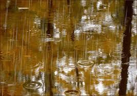 Image result for poze ploaie de toamna