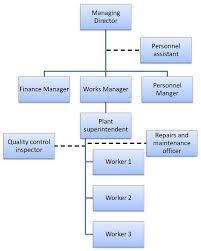 Types Of Organizational Chart In Management Organisational Structure