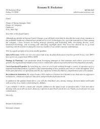 Resume Services Denver Boston Writer 8 Executive Service Inssite 3