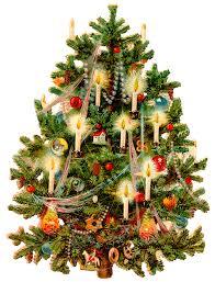 Christmas Tree Free Download 10719 Transparentpng