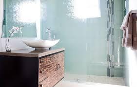 Shower Door And Frameless Shower GalleryShower Privacy