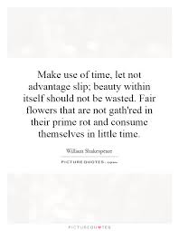 The Beauty Within Quotes Best of Make Use Of Time Let Not Advantage Slip Beauty Within Itself