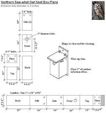 barred owl house plans inspirational great horned owl house plans