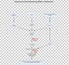 Reporting Flow Chart Template Incident Report Diagram Flowchart Template Png Clipart
