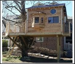 Tree House Plans Design
