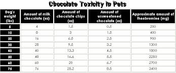 Chocolate Toxicity Chart At Petsweekly Com Pets Cat