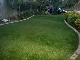 fake grass carpet. Fine Carpet Artificial Grass Carpet South Cle Elum Washington Landscape Photos Front  Yard Design And Fake