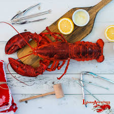 get maine lobster anywhere