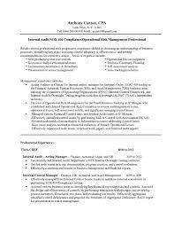Resume Confortablel Job Template Also Promotion Format Audit