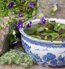 Small Picture Planting tips ideas for a container water garden The Claudia
