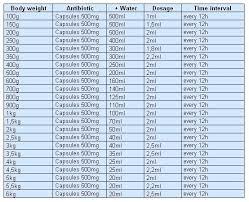 Antibiotic Dosage Chart Netbre Animals Antibiotics And Their Application On Cats