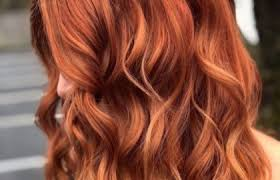 Cinnamon Hair Color Chart Hair Color Chart Shades Of Blonde Brunette Red Black In