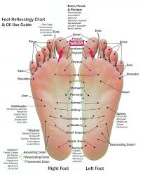 Foot Pressure Points Chart