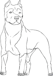 Dog Coloring Pages To Print Dog Coloring Sheet Husky Dog Coloring