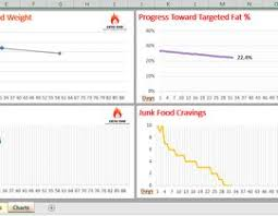 Weight Loss Tracking Spreadsheet Design A Weight Loss Tracking Excel Spreadsheet Freelancer