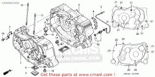honda foreman engine diagram honda wiring diagrams online