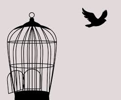 Removing To Kill A Mockingbird Is Erasing History Opinion