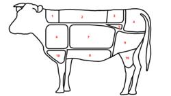 Beef Identification Chart Primal Cut Wikipedia
