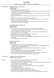 Process Associate Sample Resume Process Associate Resume Samples Velvet Jobs 1