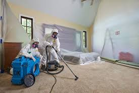 Mold Removal Remediation Services | Disaster Kleenup | DK