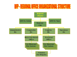 Company Fire Brigade Organizational Chart Bureau Of Fire Protection Ppt Video Online Download