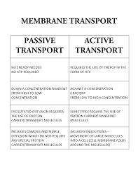 Active Vs Passive Transport Venn Diagram Passive Transport Versus Active Transport Biology Biology