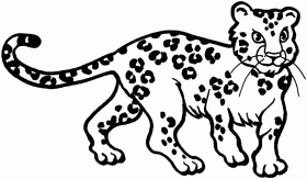 Small Picture Coloring Pages Of A Snow Leopard Printable Coloring Sheet Anbu