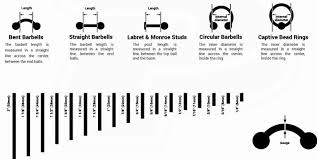 ear gauging chart actual size ear gauge chart actual size dolap magnetband co