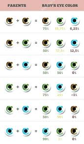 Eye Genetics Chart Hair Colour Genetics Calculator