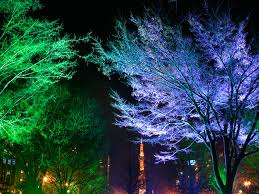 magnificent outdoor tree lighting ideas and tree lighting ideas unique holiday b 3173377978 inside design
