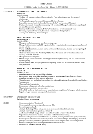 Resume Examples For Accounting Accountant Fund Accountant Resume Samples Velvet Jobs 15