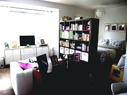 1 Bedroom Apartment Interior Design Decorating Your Home Decoration With  Cool Superb 1 Bedroom Apartment Interior .