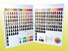 Issue Professional Color Chart Oem Manufacturer Salon Professional Hair Dye Color Chart Color Swatch Book Buy Salon Professional Hair Color Dye Chart Iso Hair Dye Color