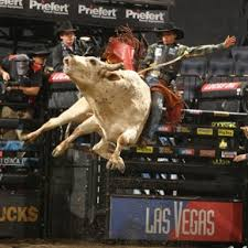 pro bull riding. Delighful Pro In Addition To Its Involvement With The Nationally Televised Built Ford  Tough Series BFTS Lucas Oil Will Be Title Sponsor For A Series Of Touring Pro  On Bull Riding L
