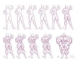 Size Chart 5 Muscle By Moxydoxy In 2019 Girl Anatomy
