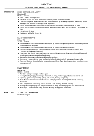 Ramp Agent Resume Ramp Agent Resume Samples Velvet Jobs 1