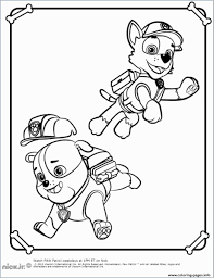 Paw Patrol Large Coloring Pages Amazing Rocky Paw Patrol Free