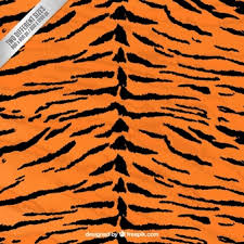 Tiger Pattern Cool Tiger Stripes Vectors Photos And PSD Files Free Download