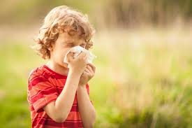 Allergy Relief Tips for Your Child and How to Know if It's Hay Fever