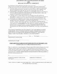 Photography Waiver And Release Form Template Fresh 19 Luxury General ...