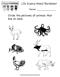 Land And Water Animals Worksheets For Kindergarten   smart furthermore science printables for kids   Life Science Animal Worksheet   Free further Here's a set of cards for matching animals to their homes likewise  together with Sea Animals Worksheets Kindergarten Curriculam Water Animals furthermore Preschool Curriculum   Learnzy as well  further Printable water cycle worksheets for preschools further Sea Animals Worksheets Water Animals Matching Worksheets in addition Science and Children  Online Connections as well Animal Spelling Worksheets at EnchantedLearning. on kindergarten animals worksheets water