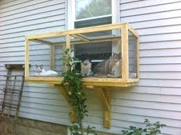 cat enclosure outdoor diy build enclosures your will