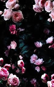 Vintage Dark Floral iPhone Wallpapers ...
