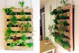 indoor vertical garden how to grow