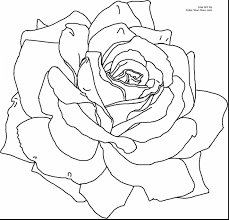 Fresh Detailed Flower Coloring Pages Gallery Printable Coloring Sheet