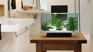 Modern Style Fish Tank with High-Tech Filtration - Modern and Contemporary  Pet Products Updated Daily - CoolPetProducts.com