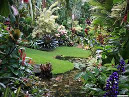 Small Picture Tropical Garden Design Ideas Brisbane Sixprit Decorps